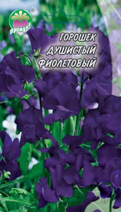 """Горошек Душистый Фиолетовый ТМ """"Примула"""""""