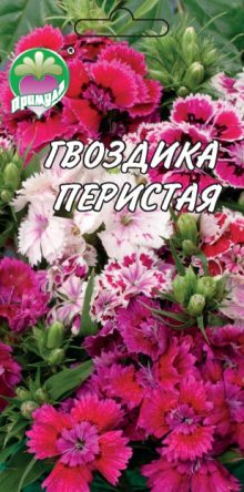 "Гвоздика Перистая ТМ ""Примула"""