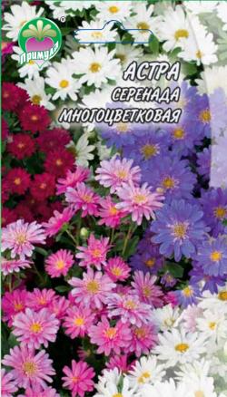 "Астра Серенада Многоцветковая ТМ ""Примула"""