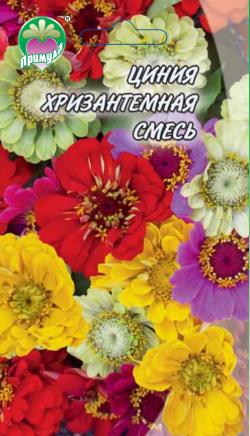 """Циния Хризантемная смесь ТМ """"Примула"""""""