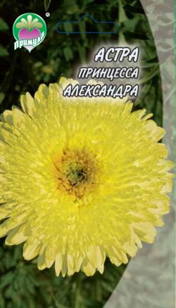 """Астра Принцесса Александра ТМ """"Примула"""""""