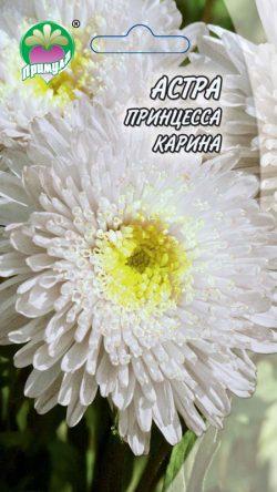 "Астра Принцесса Карина ТМ ""Примула"""