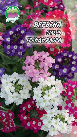 "Вербена Смесь Грандифлора ТМ ""Примула"""