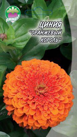 """Циния Оранжевый Король ТМ """"Примула"""""""