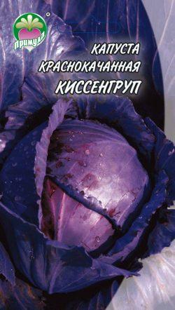 """Капуста Краснокачанная Киссенгруп ТМ """"Примула"""""""