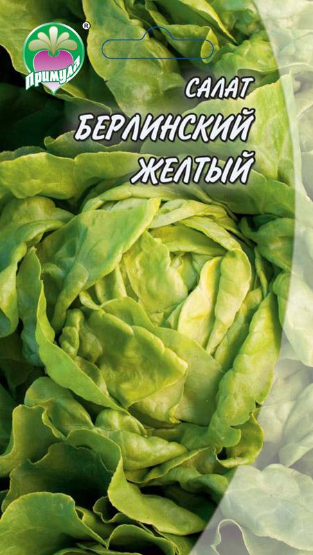 Салат берлинский желтый выращивание из семян