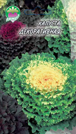 "Капуста Декоративная ТМ ""Примула"""